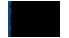 Commonwealth (DFID) Shared Scholarship Scheme Logo