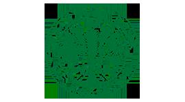 State Bank of Pakistan PhD Scholarships Logo