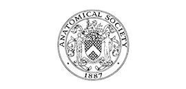 Anatomical Society Research Studentships Logo